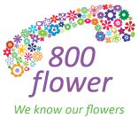 800 Flower is a leading online florist shop in Dubai, Marina offering a huge collection of exquisite flowers for every occasion. Handpick your favorite flower from their collections available online to deliver anywhere in Dubai, Marina.