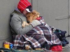 20 razones por las cuales necesitas un perro en tu vida   http://caracteres.mx/20-razones-por-las-cuales-necesitas-un-perro-en-tu-vida/?Pinterest Caracteres+Mx