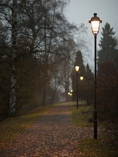 autumn leaves falling fallen leaves, pumpkin pies and cozy weather : Photo Autumn Aesthetic, Autumn Cozy, Street Lamp, Fall Season, Autumn Leaves, Fallen Leaves, Fall Halloween, Scenery, Seasons