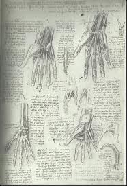 Leonardo drawings hands - Sketch book with annotations -  Google Search
