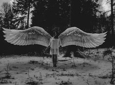 Image result for boy with black wings