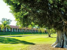 Lismore Lakeside Lodge Motel Australia, Pacific Ocean and Australia Lakeside Lodge Motel is perfectly located for both business and leisure guests in Lismore. Offering a variety of facilities and services, the hotel provides all you need for a good night's sleep. Ticket service, express check-in/check-out, luggage storage, Wi-Fi in public areas, car park are on the list of things guests can enjoy. Some of the well-appointed guestrooms feature non smoking rooms, air conditionin...
