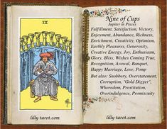 Nine of Cups: Fulfillment, Victory, Joy Nine Of Cups, Love Canvas Painting, Divine Tarot, Cards On The Table, Tarot Cards For Beginners, Baby Witch, Tarot Card Meanings, Tarot Spreads, Daily Drawing