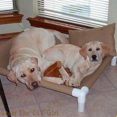 PVC Dog Cot Tutorial from The DIY Girl. This will make a dog cot that is similar to the Kuranda dog beds I like. Standing Wine Rack, Diy Air Conditioner, Dog Cots, Dog Kennels, Bird Bath Garden, Starburst Mirror, Teepee Kids, Dog Shower, Diy For Girls