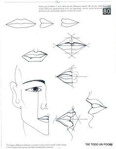 todo diagram for face
