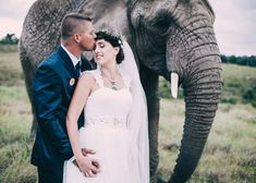 Based in Knysna, My business specializes in wedding & portrait photography. Family Portrait Photography, Family Portraits, Knysna, Wedding Portraits, Elephant, Animals, Family Posing, Animales, Animaux