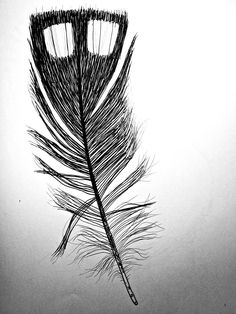 loon feather - Google Search