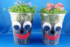 Handicraft tip spring: Funny cress mug - Crafts with children – funny cress mug The Effective Pictures We Offer You About watch fossil A - Diy Craft Projects, Diy Crafts For Kids, Children Crafts, Mug Crafts, Diy Kids Furniture, Diy Photo, Nature Crafts, Art Festival, Preschool Crafts