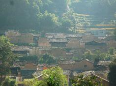 杨家堂村,横向的线条被高起的风火墙打破,人工秩序被树藤打破