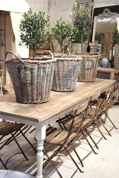 love the topiaries in baskets.. that table & those chairs!