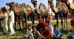 This fair attracts travelers, pilgrims and explorers alike with rituals and traditions practiced in this region. A lot of pilgrims assemble on the banks of river Chandrabhaga during the fair and participate in this gala event.