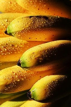 Bananas shimmer in the morning dew. Fruit And Veg, Fruits And Vegetables, Fresh Fruit, Exotic Fruit, Tropical Fruits, Photo Fruit, Fruit Photography, Photography Ideas, Beautiful Fruits
