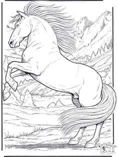Realistic Horse Coloring Pages | FunnyColoring.com / Animals coloring pages / Horses / Horse 5