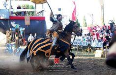 Viagem Medieval em Terra de Santa Maria de 1 a 11 de Agosto 2013 | Santa Maria da Feira | Portugal | Escapadelas ®