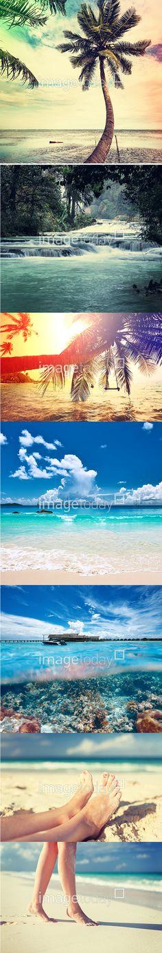 사진 #이미지투데이 #imagetoday #클립아트코리아 #clipartkorea #통로이미지 #tongroimages 바다 해변 신체 해외 휴양지 발 숲 계곡 고요 나무 자연 야자수 물결 하늘 photo sea beach body vacation venue foot forest valley quiet tree nature vwave sky