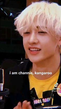 Stray Kids Chan, Stray Kids Seungmin, Felix Stray Kids, Savage Kids, Kpop Gifs, Dance Kpop, Kid Memes, Crazy Kids, Kids Videos