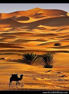 Merzouga, Maroc