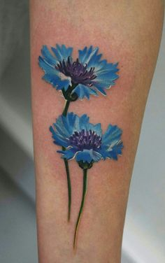 Like that it's doesn't have all the heavy, dark outline. Cornflower done by Tolik Gaidamovic. Mini Tattoos, Cover Up Tattoos, Cool Tattoos, Tatoos, Flower Tattoo Back, Flower Tattoo Designs, Flower Tattoos, Celtic Tattoos, Tribal Tattoos