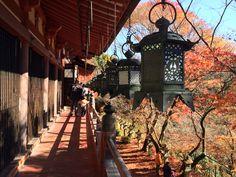 Tanzan Shrine @Nara
