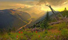Mount-Rainier-Washington-2