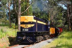 Daylesford Spa Country Railway Railfan Day - Y159