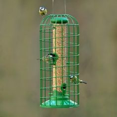 GBS Exclusive Classic Seed Feeder with Guardian - deter squirrels from emptying your feeder