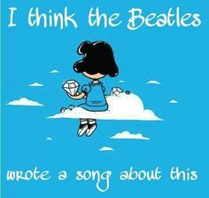 The Beatles were my idols. =^..^=