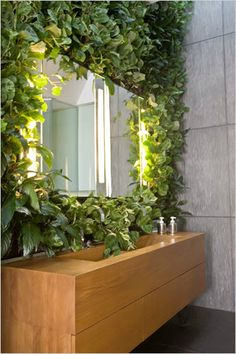Bathroom with Plants 14
