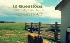 12 Questions to Ask Before Buying a Homestead