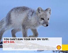 """Sarkasmus 2.0:  """"Du kannst deinen SUV nicht mit 'Niedlich' tanken."""" Geniale, wenn auch ernüchternde Kampagne von Greenpeace"""