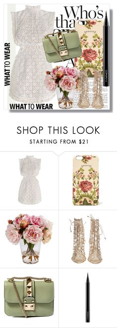 """Zimmermann!!"" by dianagrigoryan ❤ liked on Polyvore featuring Zimmermann, Gucci, Winward, Sophia Webster, Valentino and MAC Cosmetics"