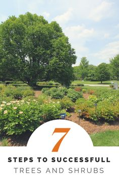 Learn seven key steps to ensure full establishment of newly planted trees and shrubs. Fall is the absolute very best time to get them in the ground. Planting Shrubs, Garden Shrubs, Home Landscaping, Front Yard Landscaping, Unique Gardens, Beautiful Gardens, Trees And Shrubs, Trees To Plant, Fall Lawn Care