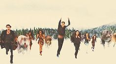 """"""" ✚ WOLF/WEREWOLF GIF HUNT ✚ """" As requested by myself, here is a gif hunt containing small, hq gifs of wolves/werewolves/shape-shifters. These gifs are from The Twilight Saga and can be used in. Jasper Twilight, Twilight Wolf Pack, Twilight Edward, Twilight Cast, Twilight Movie, Twilight Saga Quotes, Twilight Jokes, Twilight Saga Series, Fantasy Creatures"""