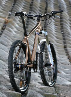 sweet Rohloff mtb (who is that frame by???)
