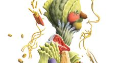 Why don't the medical guidelines reflect the evidence, and suggest a low-carb diet?- NYT
