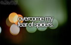 Overcome my fear of spiders.
