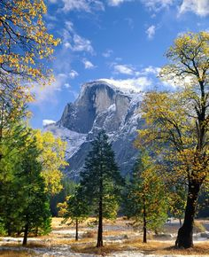 As fall fades and winter comes, it makes for some beautiful photos. Pictured here is Yosemite National Park's iconic Half Dome in California peeking through the trees in the valley. Photo courtesy of Ed Cooper. California National Parks, Yosemite National Park, Yosemite California, Yosemite Valley, Go Camping, Camping Hacks, Outdoor Camping, Camping Ideas, Vacation Destinations