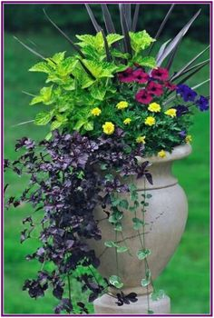 6 Simple Tricks for Beautiful Garden Containers Do your planters look sad and tired when the dog days of summer arrive? We've got 6 simple tricks to keep your containers looking their best all season. Outdoor Flowers, Outdoor Planters, Garden Planters, Outdoor Gardens, Planters For Front Porch, Potted Plants Patio, Potted Garden, Front Porches, Herb Garden