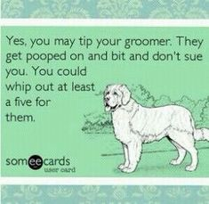 Pin by The Groomers Profit Generating Kit on Groomer Humor   Pinterest