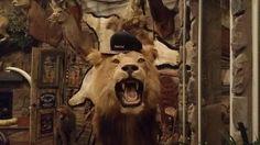 /Kwotz/ #hat #mensfashion #lion http://www.kwotzwear.com/
