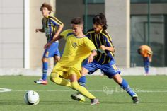 Juniores C: Arbitragem tendenciosa impede azuis e ouro de pontuar | Portal Elvasnews