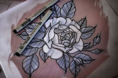 one of my favorite parts of tattoos is actually the drawings. they always look so good and clean. alice carrier rose tattoo