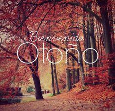 bienvenido otoño.jpg3