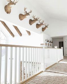 Great way to display deer heads / animal mounts -- Niña & Cecilia (Niña and Cecilia Deer Mount Decor, Deer Head Decor, Rustic Living Room Furniture, Cozy Living Rooms, Cabin Furniture, Western Furniture, Furniture Design, Modern Farmhouse Exterior, Farmhouse Decor