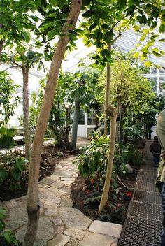 Växthus/naturhus-inspiration