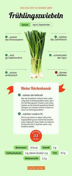 Das solltest du über Frühlingzwiebeln wissen | eatsmarter.de #frühlingszwieblen #infografik #ernährung