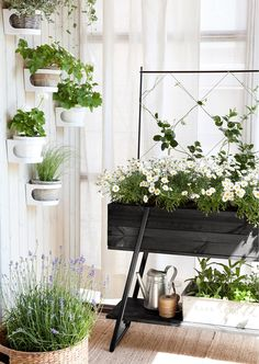 Space-Saving Balcony Decoration Ideas with Planter Box - Unique Balcony & Garden Decoration and Easy DIY Ideas Balcony Planters, Square Planters, Balcony Garden, Indoor Garden, Indoor Plants, Outdoor Gardens, Terrace, Raised Planter Boxes, Garden Planter Boxes