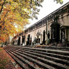 Budapest, Kerepesi cemetery - visit it with Budapest 101 on a cemetery tour!
