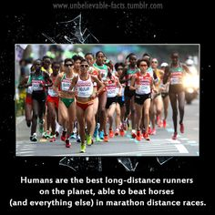 """unbelievable-facts: """"humans are the best long-distance runners on the planet, able to beat horses (and everything else) in marathon distance races. """""""