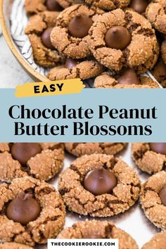 These delicious double chocolate peanut butter blossoms are a must have easy cookie recipe. Wonderfully rich and sweet, these chocolate and peanut butter cookies are finished with a chocolate kiss for the most perfect double chocolate cookie. #cookierecipe #chocolatelover #treat Chocolate Kiss Cookies, Chocolate Treats, Chocolate Lovers, Peanut Butter Blossoms, Peanut Butter Cookies, Chocolate Peanut Butter, Quick Cookies, Yummy Cookies, Delicious Cookie Recipes